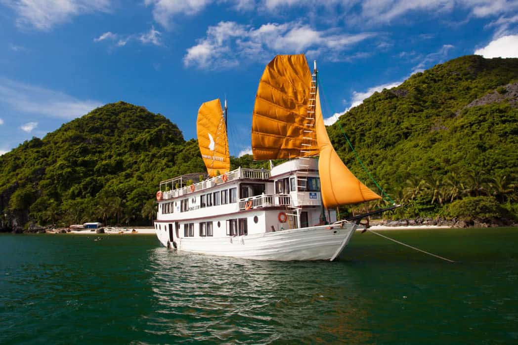 What to do in Halong Bay in February