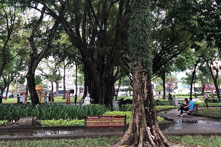 Activities in Le van tam park