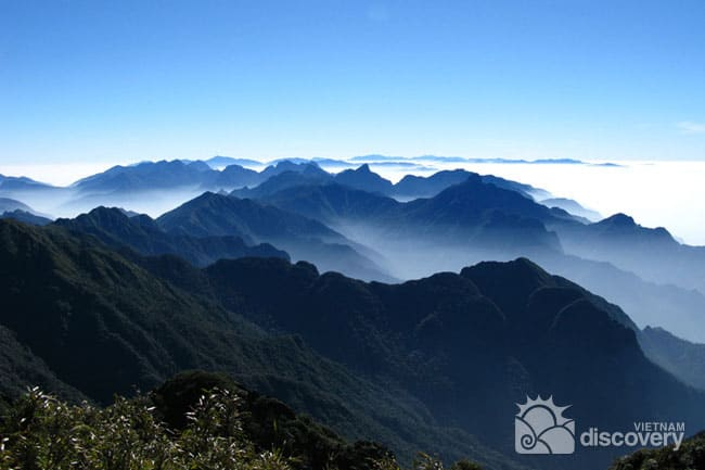 Conquering Fansipan Peak - The Roof of Indochina