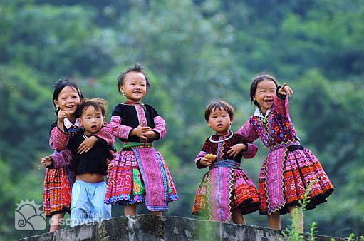 Vietnam Northern Highlights