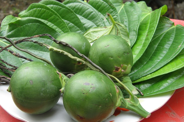Areca nut and betel leaf in betel chewing