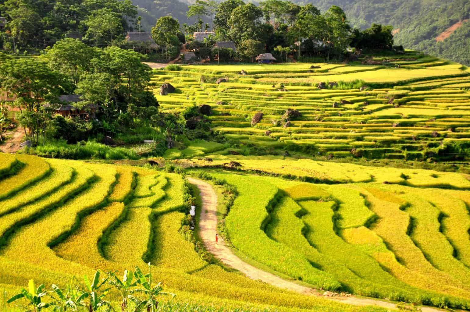Vietnam weather in September