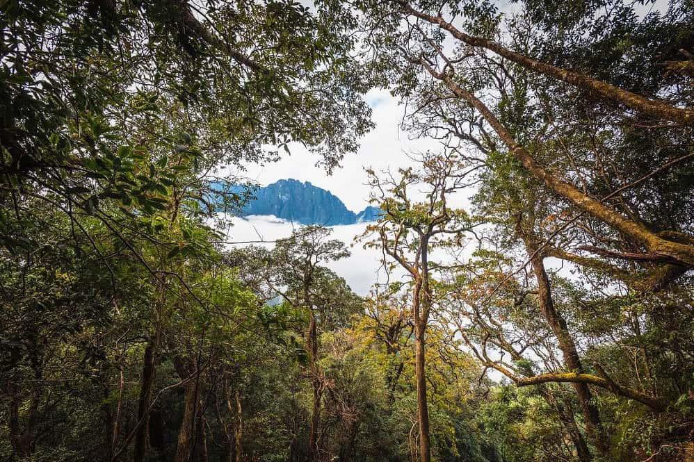 Bach Moc Luong Tu mountain