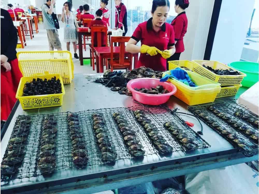 Phu Quoc pearl farm