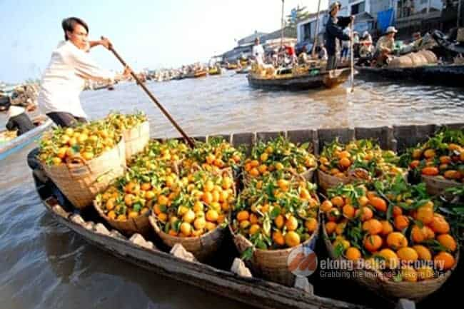 Mekong Delta with Floating Market Day Tour