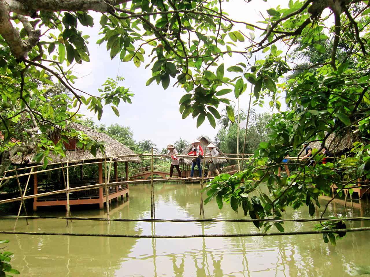 Go across Monkey bridge in Mekong Delta