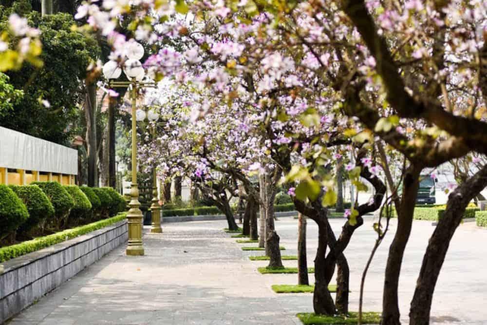 How to explore Hanoi in March