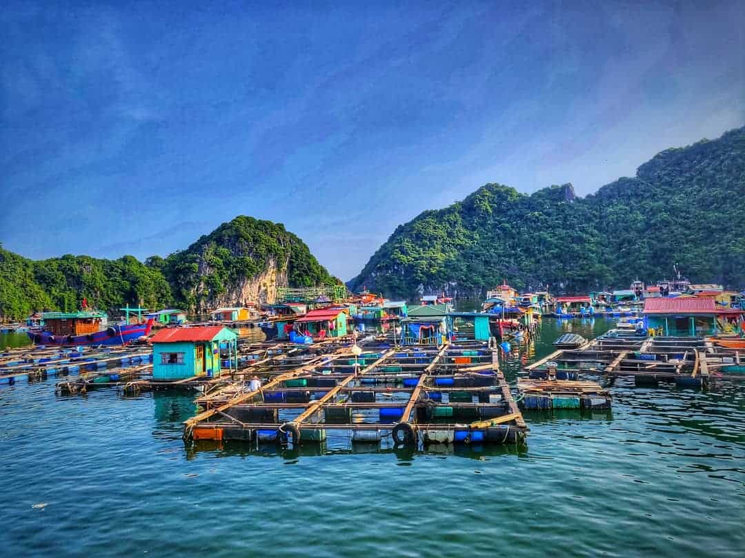 What to do in Cua Van Floating village