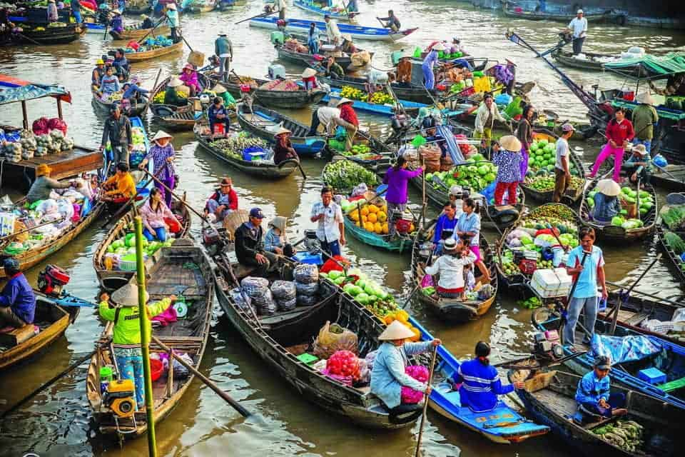 Cai Rang Floating Market Highlights