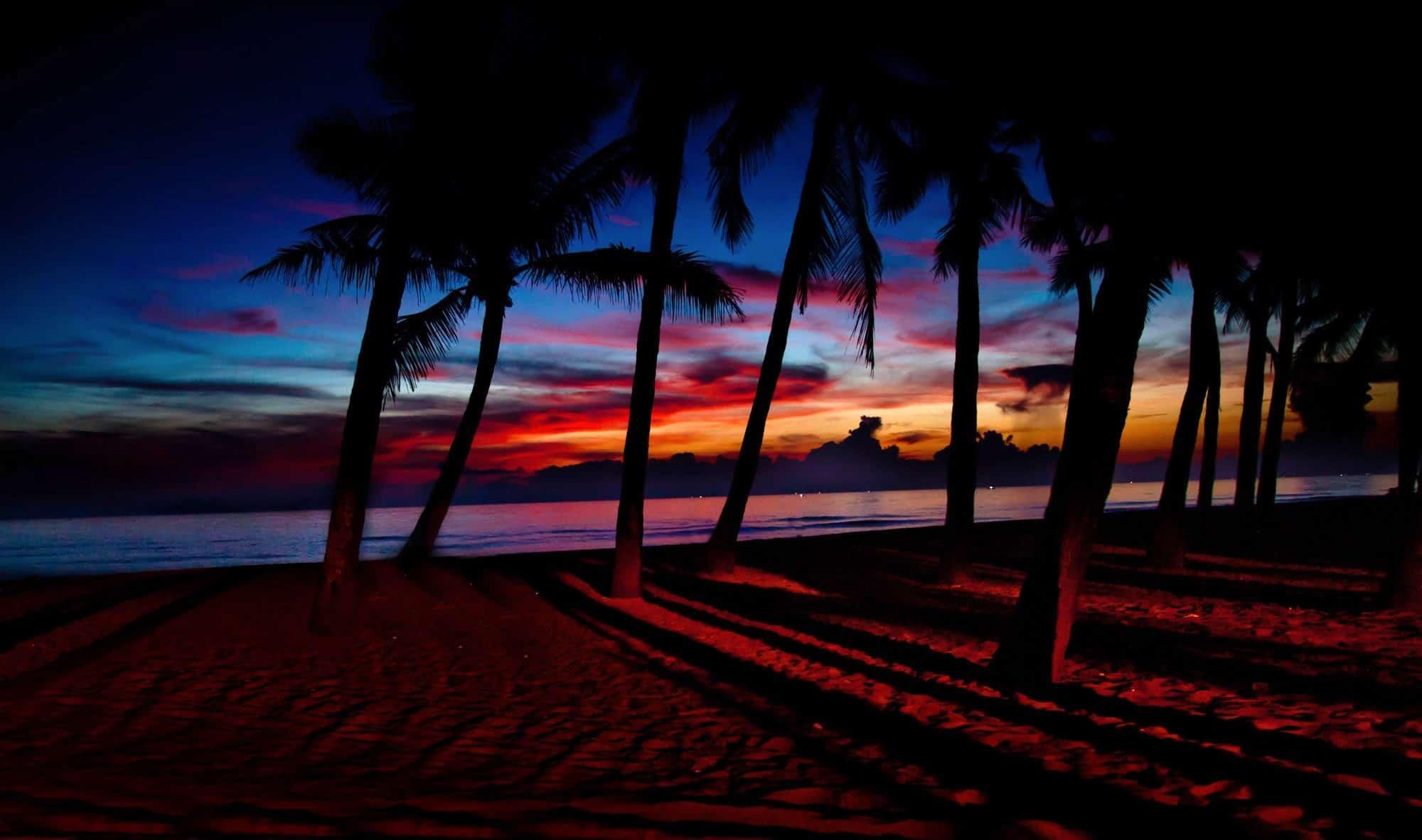 Cua Dai Beach Highlights