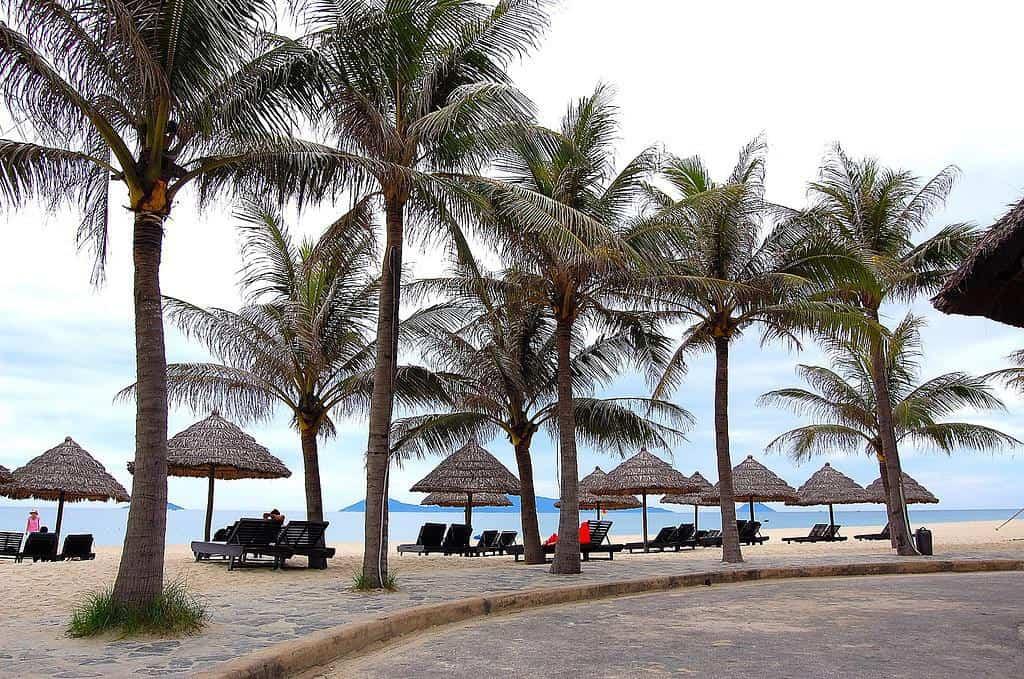 Cua Dai Beach Overview