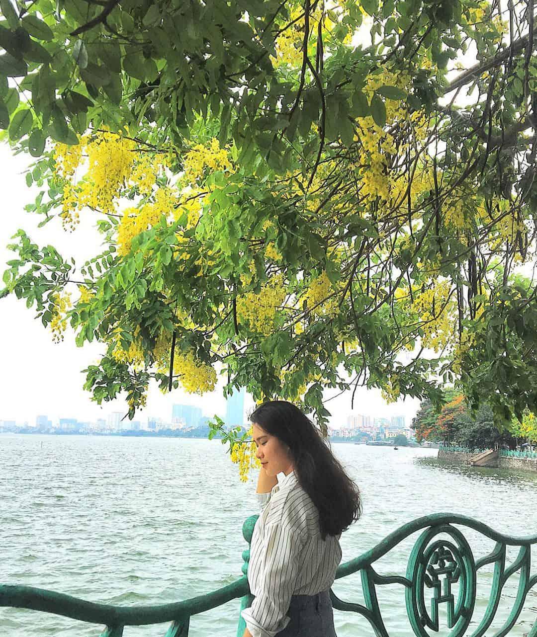 Hanoi Scams Photo