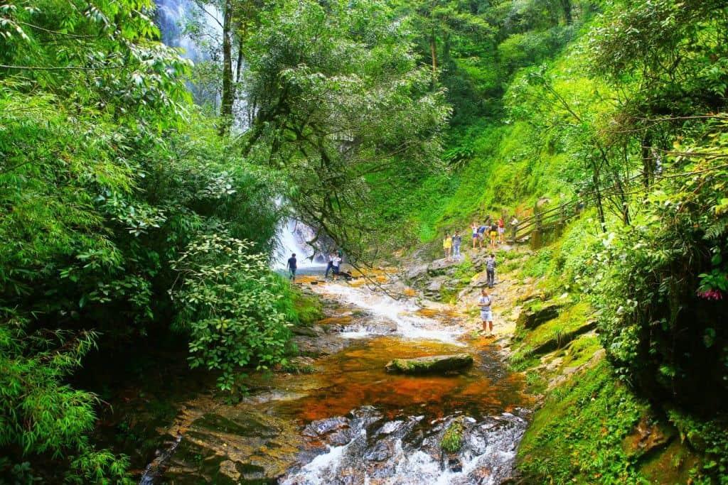 Phu Quoc National Park Conservation