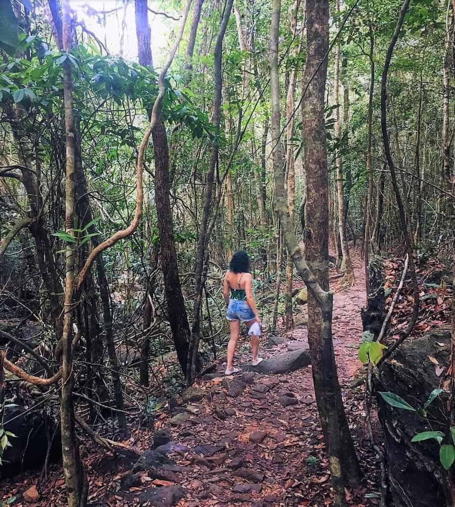Phu Quoc National Park Trekking