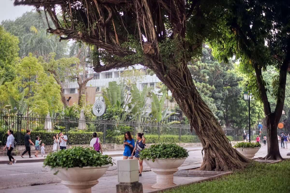 Visit Ly Thai To garden near Ngoc Son temple
