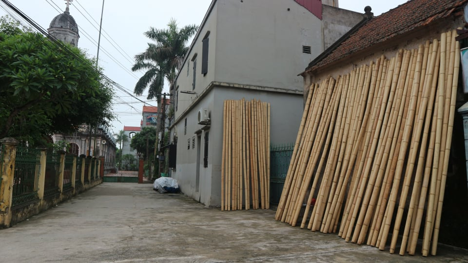 Bamboo to make vac bird cage