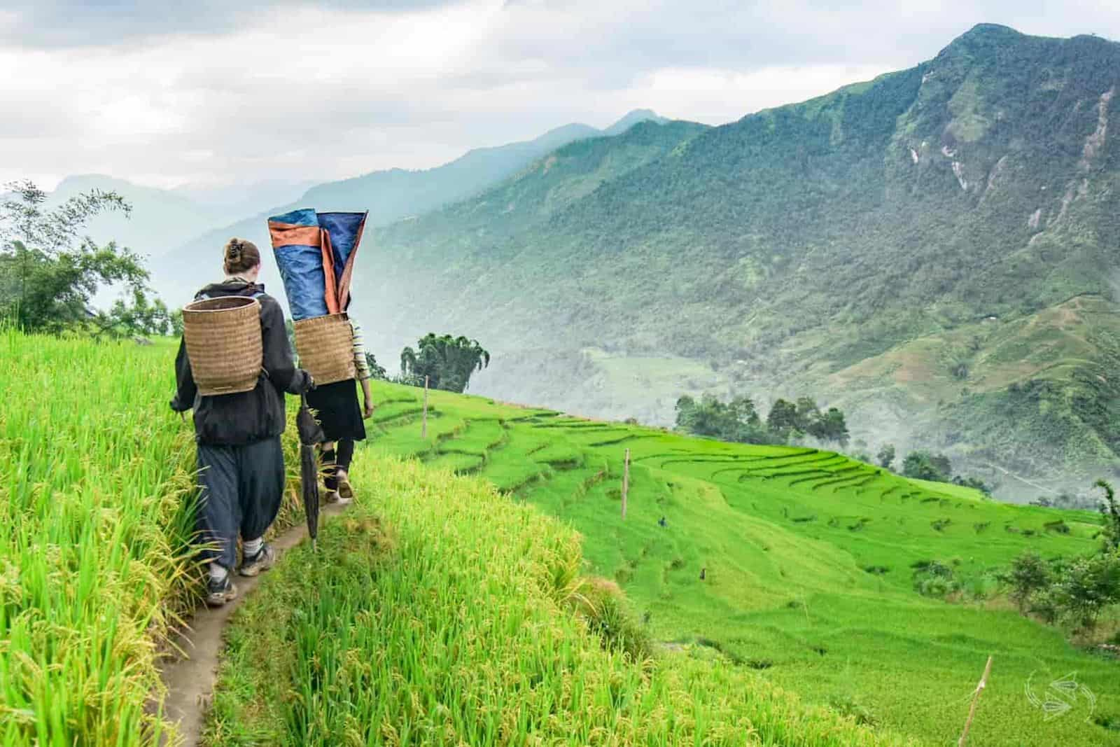 Sapa Trekking and Halong Bay by Bus 5-Day Full Tour